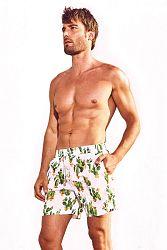 Pánske kúpacie šortky DAVID 52 Cactus